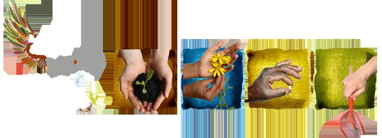 Formation des ambassadeurs du jardinage et du bien vivre for Les techniques de jardinage